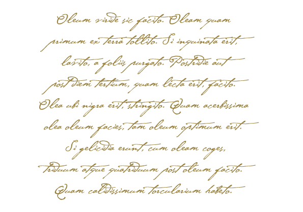 pergamena olio messer francesco